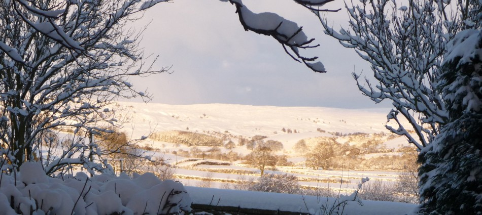 Rosedale Abbey In Snow